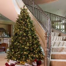 8ft Christmas Tree Ebay by 100 Fibre Optic Christmas Trees Ebay Catchy Collections Of