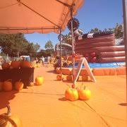 Pick Of The Patch Pumpkins Santa Clara by Pick Of The Patch Pumpkins U0026 Abc Tree Farms 30 Photos Pumpkin