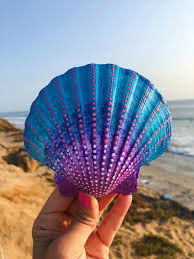 100 Sea Shell Design 20 Painted S Theme Peinture Coquillage