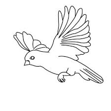 Amazing Bird Flying Floating Coloring Page