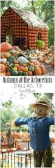 Pumpkin Patch Waco Tx 2015 by 100 Best Images About Explore Texas On Pinterest Free Things To