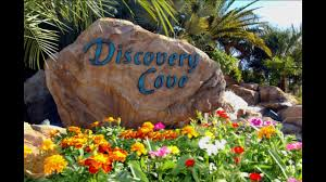 Discovery Cove Coupons : Costco Canada Coupon Book 2018 Best Pizza Coupons June 2019 Amazon Discount Code July Tips For Visiting Seaworld San Diego For Family Trips While Going To The Orlando Have Avis Promo Upgrade Azopt Card Mushybooks Payback Coupon Book App Online Codes Bath And Body Works Belk Seaworld Gold Coast Adventure Island Deals Can I Reuse K Cups Pelotoncycles Promo Codes 122