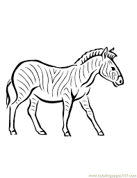 Free Printable Coloring Page Zebra Mammals
