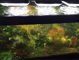 led aquarium lights lighting how they work diy aquarium
