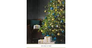 Nordmann Fir Christmas Tree Seedlings by Nordmann Fir Large Christmas Tree Aldi Uk