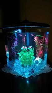 aqua culture 2 5 gallon corner aquarium kit led light and power
