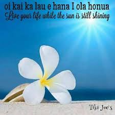 Best 25 Hawaiian Sayings Ideas On Pinterest