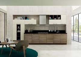 Contemporary Styled Kitchen Cabinet Design