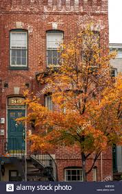 House with a green door In Geor own Washington DC during Fall