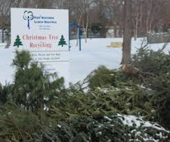 Waste Management Christmas Tree Pickup Mn by Christmas Tree Recycling U2013 Keep Northern Illinois Beautiful U2013knib