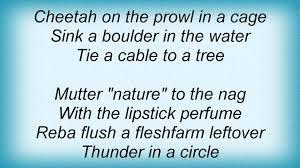 Phish Bathtub Gin Magnaball by 18194 Phish Reba Lyrics Youtube