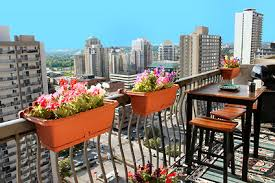 Balcony Planting Flowers High Rise Apartment Gardening In Small Spaces