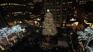 Nyc Christmas Tree Disposal by Secrets Of The Rockefeller Center Christmas Tree Am New York