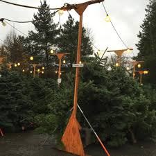 Christmas Tree Amazon Local by Christmas Tree Lot U2022 Holy Rosary