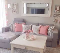 Pinky Grey First Apartment Living Room Ideas