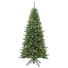 7 1 2 Remote Kingston Pine Tree
