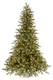 C 160124 9 Scottish Fir Tree With LED Lights 73 Width