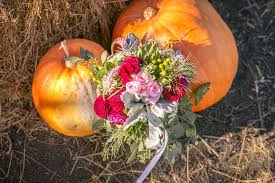 Pumpkin Patch Santa Rosa by Karen And Justin U0027s Wedding At Eastside Seasonal Farm And Pumpkin