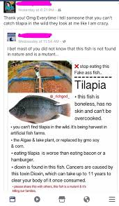 Tilapia Swims Around Boneless And Skinlessyes This Person Is Being Serious