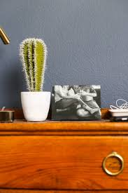 Ideas For Displaying Family Photos – Love & Renovations Its The Small Moments That Matter On Valentines Day Fractureme Browse Images About At Instagram Imgrum 25 Off Fracture Coupons Promo Discount Codes Wethriftcom Nicole Banuelos Twitter Our Homework Station Is Finally Bone Healing Supplements Do They Work Health Fractureme Com Coupon Coupon Glass Photos Reviews 35 Of Fracturemecom Fat Bike Great Deal Thread Mtbrcom Display Your With Fall Sale 15 Top 10 Punto Medio Noticias