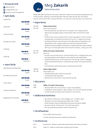 Executive Resume: Sample And Complete Guide [+20 Examples] Marketing Resume Format Executive Sample Examples Retail Australia Unique Photography Account Writing Tips Companion Accounting Manager Free 12 8 Professional Senior Samples Sales Loaded With Accomplishments Account Executive Resume Samples Erhasamayolvercom Thrive Rumes 2019 Templates You Can Download Quickly Novorsum Accounts Visualcv By Real People Google 10 Paycheck Stubs