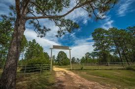 Ergle Christmas Tree Farm by Hickory Creek Farm Ms Ranch For Sale