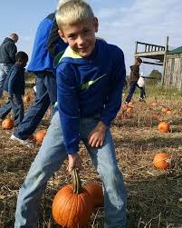 Pumpkin Patch Cleveland Mississippi by Benton Farms Benton Family Farm