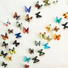 Colorful Wall Decorative Butterflies For Walls