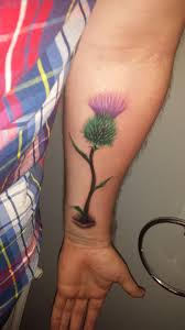 Got A Thistle Tattoo At The Weekend What Do You Guys Think