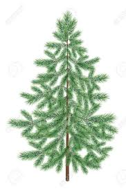 Unlit Christmas Trees Sears by 26 Best Artificial Christmas Trees Images On Pinterest