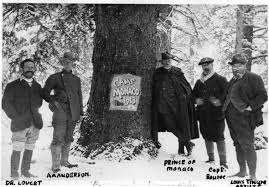 Colorado Blm Christmas Tree Permits by Conservation Politics U0027triple A U0027 Anderson And The Yellowstone