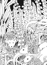 Creative Haven Midnight Forest Coloring Book Animal Designs On A Dramatic Black Background Dover Publications
