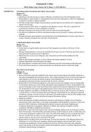 Download Security Manager Resume Sample As Image File