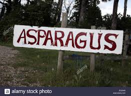 Sign For Asparagus At Wiveton Hall Farm, Blakeney, Norfolk ... Furzey Hall Farm Ms Building Renovation Cotswold Stone Barn Old In Melton Constable Sfcateringtravel A Rustic Diy Barn Wedding Norfolk Kat Rob Glebe Farm Barn Wedding Norfolk Otographer Woodhead Willows Ref E4080 Cheadle Staffordshire Cto Kings Lynn Ttagescom 3 Barns Gimingham Islington Cottage Self Catering Sleeps 2 Eastgate North Elmham Youtube Barmer Syderstone Bed Property 900 Pcm