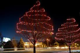 Christmas Lights Wrapped Around A Deciduous Tree
