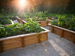 How To Make A DIY Raised Bed Using Building Blocks | DIY Network ... 38 Homes That Turned Their Front Lawns Into Beautiful Perfect Drummondvilles Yard Vegetable Garden Youtube Involve Wooden Frames Gardening In A Small Backyard Bufco Organic Vegetable Gardening Services Toronto Who We Are S Front Yard Garden Trends 17 Best Images About Backyard Landscape Design Ideas On Pinterest Exprimartdesigncom How To Plant As Decision Of Great Moment Resolve40com 25 Gardens Ideas On