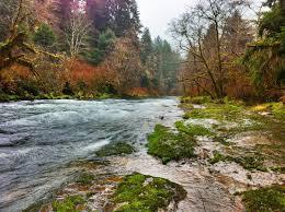 Best Trails near Waldport Oregon