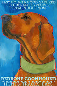 Do Redbone Coonhounds Shed by 23 Best Redbone Coondogs Images On Pinterest Redbone Coonhound