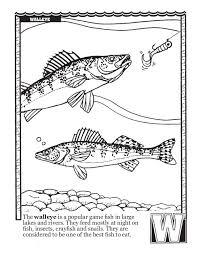 Fishing ABCs Coloring Book