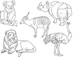 Preschool Coloring Pages Zoo Animals