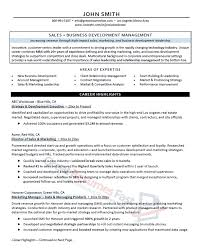 Sales Business Executive Resume Sample