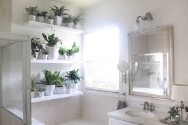 Pot Plants For The Bathroom by Plant Wall In The Bathroom House Mix