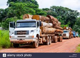Brazil Amazon Rainforest Logging Truck Carrying Timber Stock Photo ... Truck With Logs Heavyhauling Pinterest The 1945 Intertional Logging Sierra Nevada Museum My Brakes Locked Up Logging Truck Driver At Cape Perpetua Hq 142 Hdx For Spin Tires Update Rolls Over On Ashby Road Kenworth 849 Pre Load Ta Trailer Forestech A Log Loader Or Forestry Machine Loads At Site 1949 Diamond T 2014 Antique Show Put O Flickr 16th Bruder Mack Granite Knuckleboom Grapple Crane Charlotte County Man Suffers Minor Injuries In Wreck Harvester Mule Train Simulator 2 Android Apps Google Play