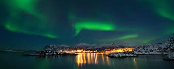 Wildlife & Northern Lights In Senja Norway