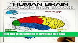 Books Human Brain Coloring Book Full Download