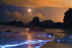 Moonset Over Laguna Beach California