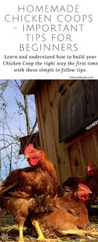 Page: 39 Of 58 Backyard Ideas 2018 Chickens Make Me Happy 28 Best Broken Arrow Backyard Images On Pinterest Austin The Pros And Cons Of Popsugar Home Coop De Ville In Tx Page 4 Backyard The Doodle House Instagram Photos Videos Tagged With Atxlocal Snap361 Texas Flock Sell Out Cdc Links To Nationwide Salmonella Outbreaks In Your Program Hatches Oct 13 Backyards Modern Landscape Design Ideas Stone Fire Pits Water