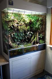 Decorator Crab Tank Mates by 225 Best Vivarium Images On Pinterest Terrarium Ideas Reptile