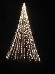 Picture Of HUGE Light Christmas Tree