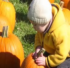 Pumpkin Patch Cleveland Mississippi by Pumpkin Train